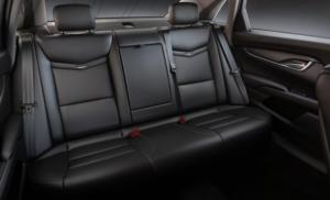 Luxury Sedan Backseat